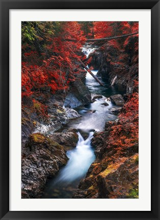 Framed Water in the Fall Print