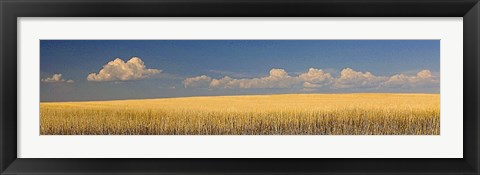 Framed S. Dakota Prairie 1 Print