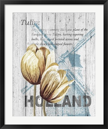 Framed Holland Tulips Print