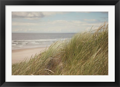 Framed Beach Grass I Print