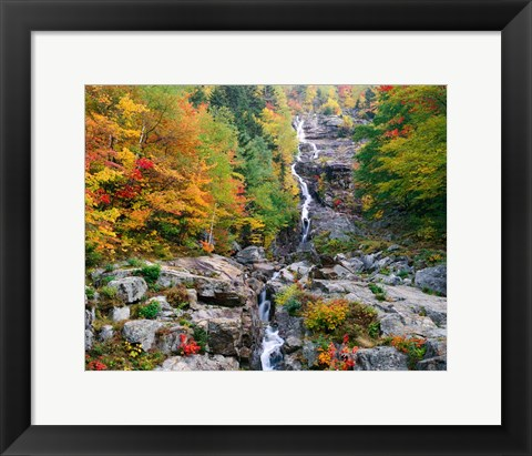 Framed White Mountains National Forest Print