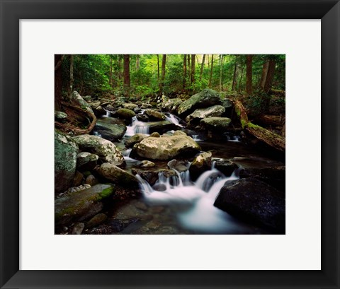 Framed LeConte Creek, Great Smoky Mountains National Park Print