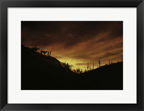 Framed Sunset over The Sonoran Desert, AZ Print