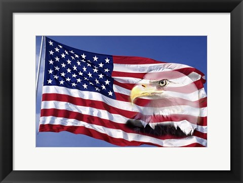 Framed Bald Eagle on Flag Print