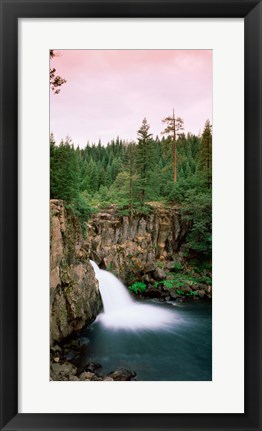Framed Forest Waterfall, Shasta, California Print