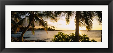 Framed Kohala Coast, Big Island, Hawaii Print
