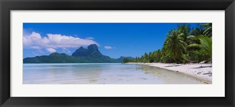 Framed Palm Trees in Bora Bora, French Polynesia Print
