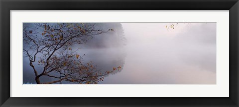 Framed Lake Vesuvius, Wayne National Forest, Ohio, Print