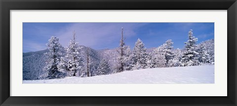 Framed Snow Covered Landscape, Colorado Print