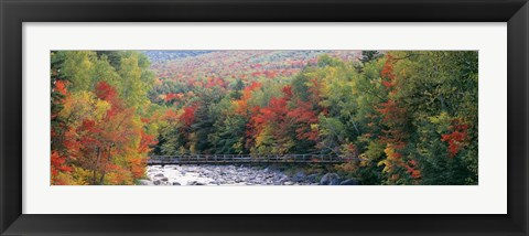 Framed White Mountain National Forest, NH Print