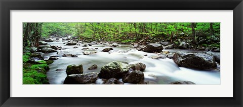 Framed Great Smoky Mountains National Park, Tennessee Print