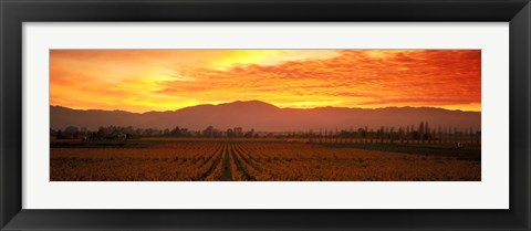 Framed Sunset over Napa Valley Print