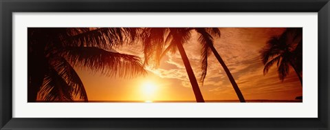 Framed Fort Meyers Florida Sunset Print
