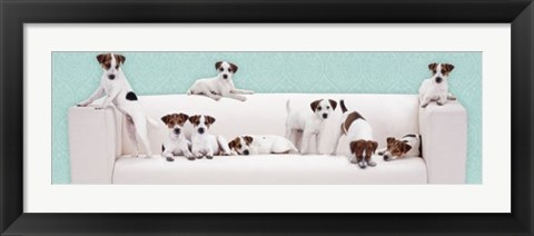 Framed Posh Pups Print