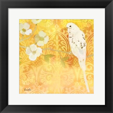 Framed Budgie & Cartouche I Print