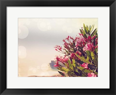 Framed Flowers in Paradise II Print