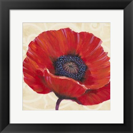 Framed Red Poppy I Print