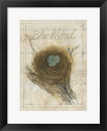 Framed Nest - Blackbird Print