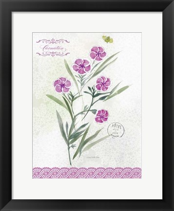 Framed Flower Study on Lace III Print