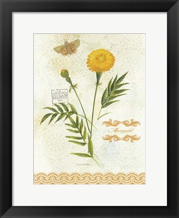 Framed Flower Study on Lace XI Print
