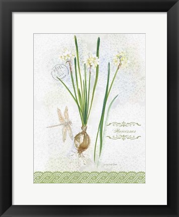 Framed Flower Study on Lace XII Print