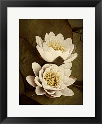 Framed Lily Pad Duo Print