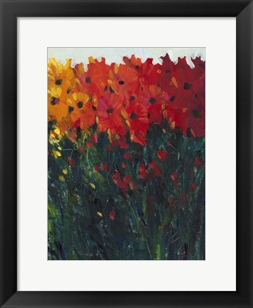 Framed Color Spectrum Flowers I Print