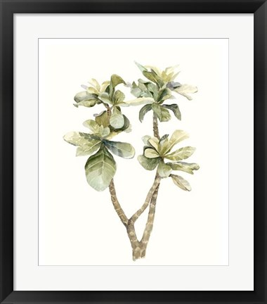 Framed Tropical Watercolor Leaves III Print