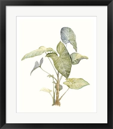 Framed Tropical Watercolor Leaves IV Print
