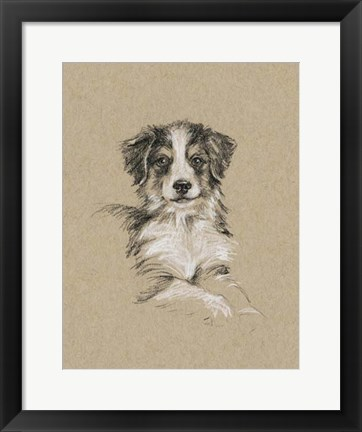 Framed Breed Sketches IV Print
