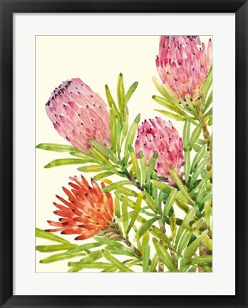 Framed Watercolor Tropical Flowers I Print