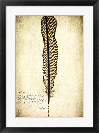 Framed Feather on the Wind V Print