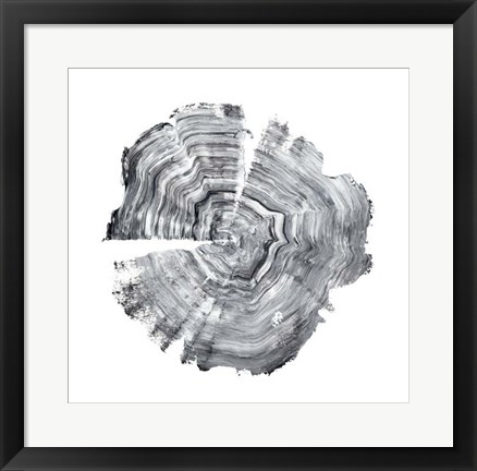 Framed Tree Ring Abstract IV Print