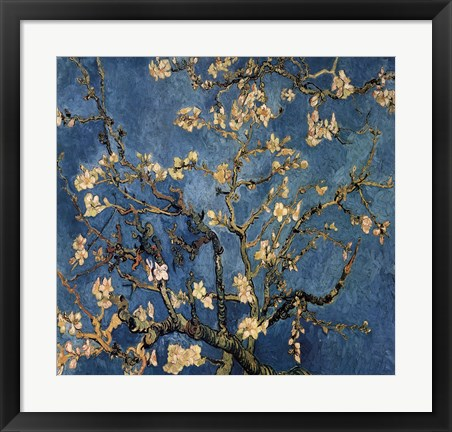 Framed Blossoming Almond Tree, Saint-Remy, c.1890 Print