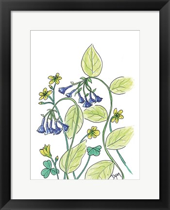 Framed Virginia Bluebells Print