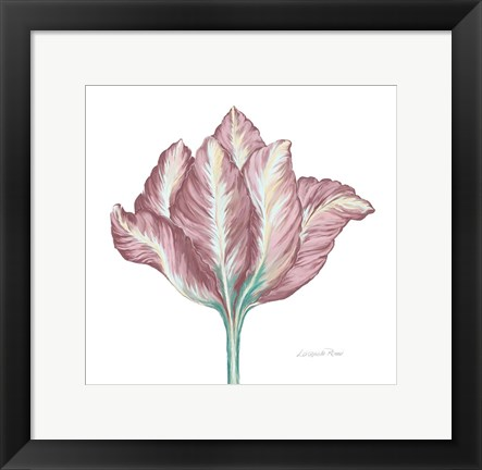 Framed Romantic Tulip 2 Print