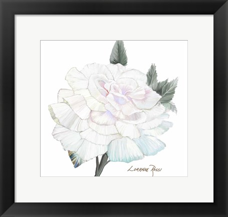 Framed Peace Rose 2 Print