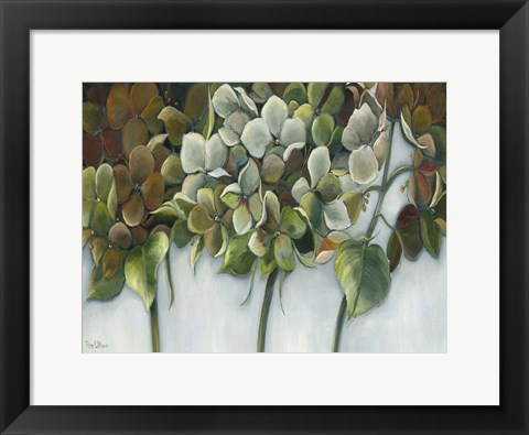 Framed Hydrangea Twilight Print