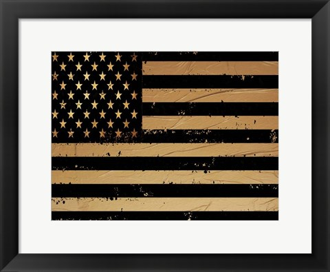 Framed Gold And Black America Print