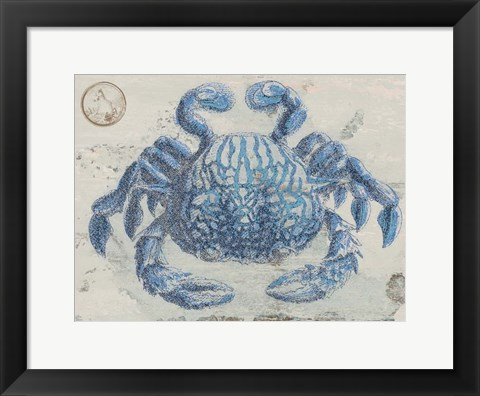 Framed Mysterious Crustacean Print