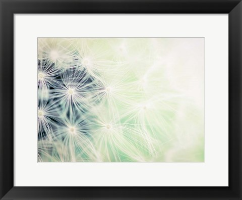 Framed Wishes Mint Print