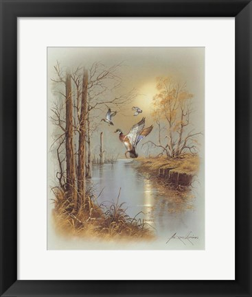 Framed Ducks B Print