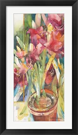 Framed Architectural Amaryllis Print