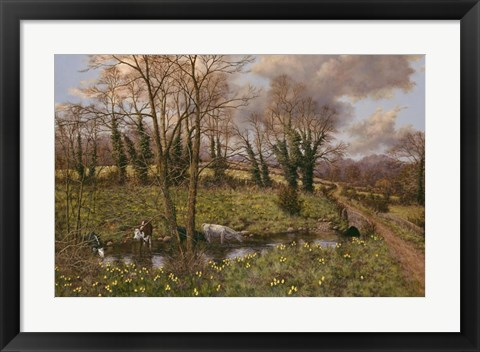 Framed Cattle And Daffodils Print