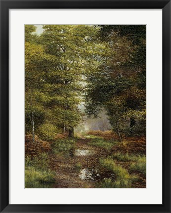 Framed Woodland In The Fall Print