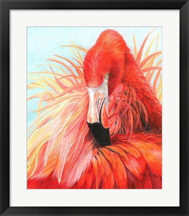 Framed Red Flamingo Print