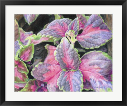 Framed Purple Flowering Plant Print