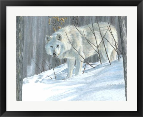Framed Winter Wolf Print
