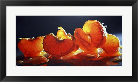 Framed Mandarin Orange Print