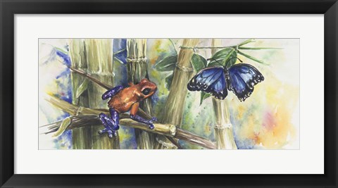 Framed Blue Morpho Print